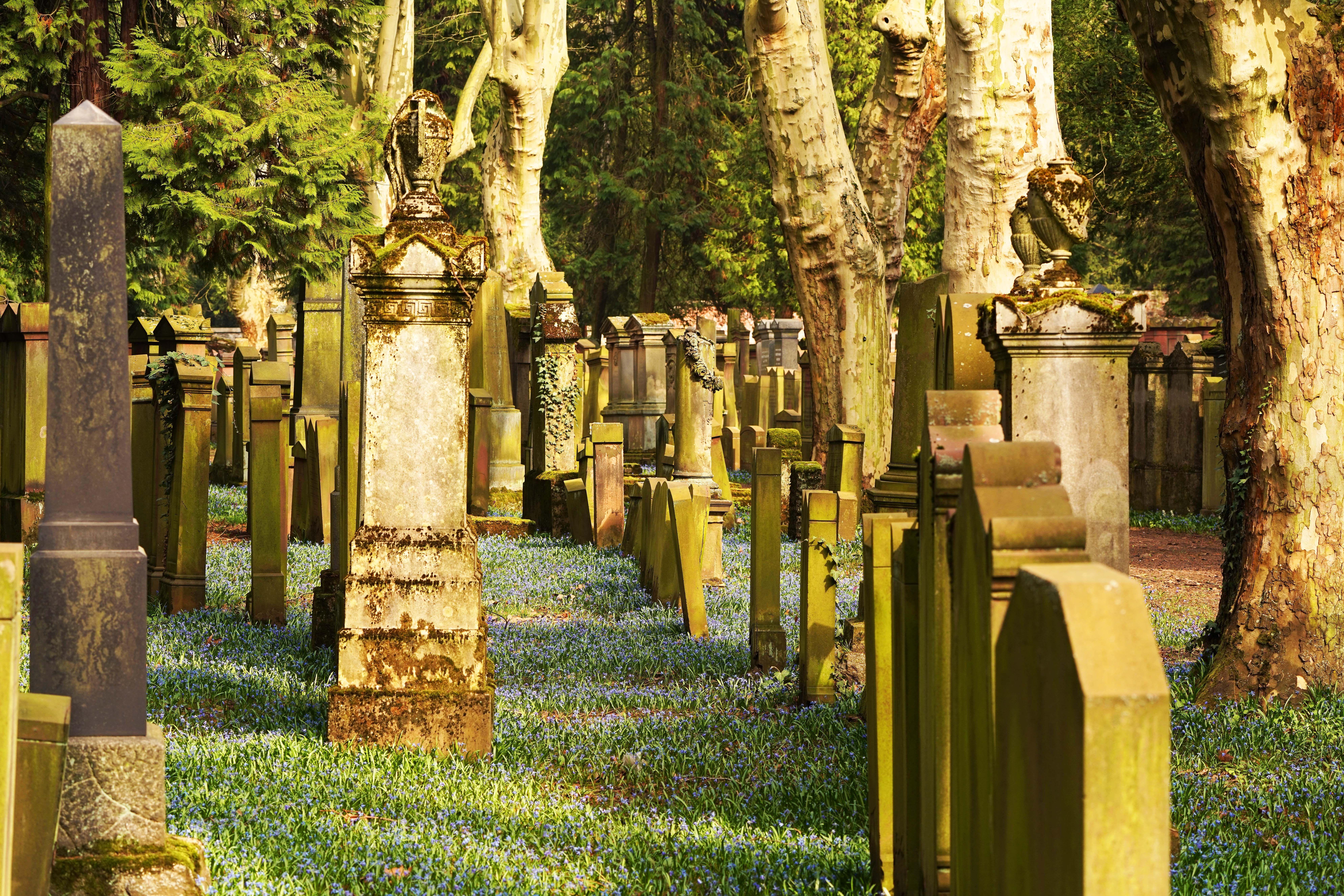 Jüdischer Friedhof Frankfurt